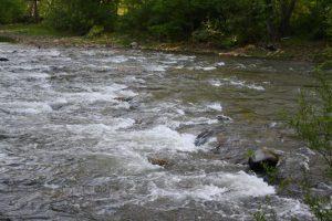 Seneca water